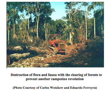 Cuban deforestation to prevent revolution